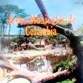 Joyas Musicales de Colombia van Jose Sanchez