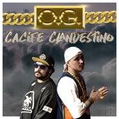 O. G. de Cacife Clandestino