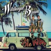 Ole Ole WB von Wildkogel Buam