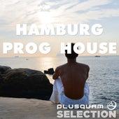 Hamburg Prog House by Various Artists