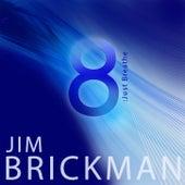 8: Just Breathe by Jim Brickman