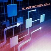 Nu Deep Rhythms, Vol. 1 (Selection of Nu Deep House) by Various