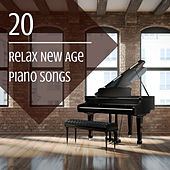 20 Relax New Age Piano Songs de Brian Eno