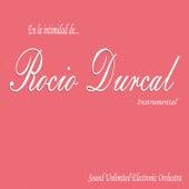 En la Intimidad de Rocio Durcal (Instrumental) by Sound Unlimited electronic Orchestra