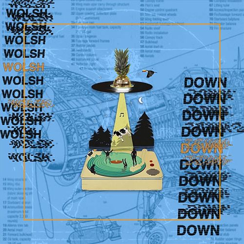 Down by Wolsh