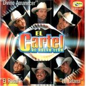 El Cartel de Nuevo Leon by El Cartel De Nuevo Leon