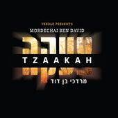 Tzaakah de Mordechai Ben David