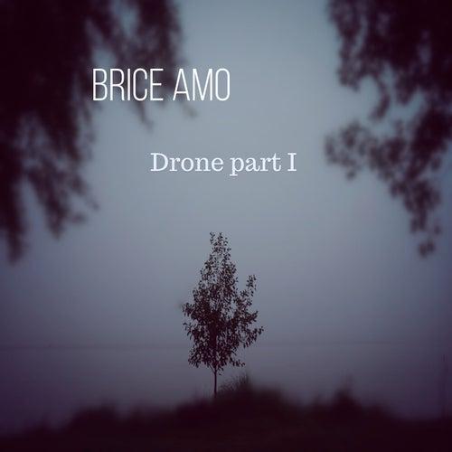 Drone I by Brice AMO