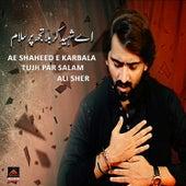 Ae Shaheed e Karbala Tujh Par Salam by Sher Ali