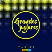 Grandes Juglares de Various Artists