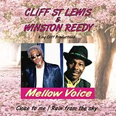 Mellow Voice by Various Artists