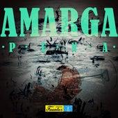 Amarga Pena de Various Artists