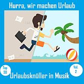 Top 30: Hurra, wir machen Urlaub - Urlaubsknüller in Musik, Vol. 2 van Various Artists