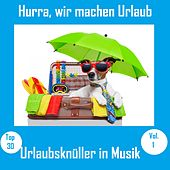 Top 30: Hurra, wir machen Urlaub - Urlaubsknüller in Musik, Vol. 1 van Various Artists