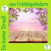 Top 30: Ein bunter Strauß von Frühlingsliedern, Vol. 2 van Various Artists