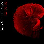 Seeing RED by Andy C