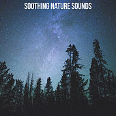 Soothing Nature Sounds von Soothing Sounds