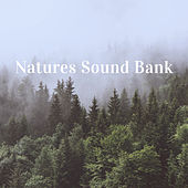 Natures Sound Bank by Various Artists