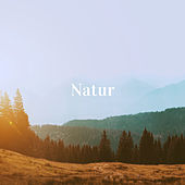 Natur by Various Artists