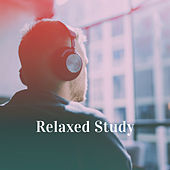 Relaxed Study by Various Artists