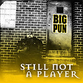 Still Not a Player EP von Big Pun