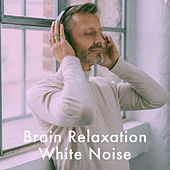 Brain Relaxation White Noise by Various Artists