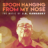 Spoon Hanging from My Nose by Various Artists