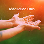 Meditation Rain de Various Artists