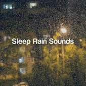 Sleep Rain Sounds by Various Artists