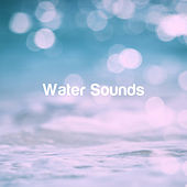 Water Sounds de Various Artists