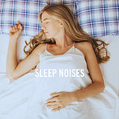 Sleep Noises de Various Artists