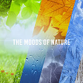The Moods Of Nature by Various Artists