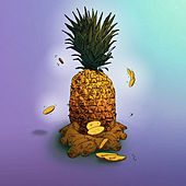 Pine & Ginger (feat. Tessellated) (Seeb Remix) von Amindi K. Fro$t