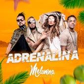 Adrenalina by Melanina Carioca