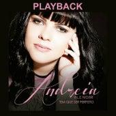 Tem Que Ser Perfeito (Playback) by Andréia Alencar