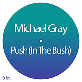 Push (In the Bush) (Edit) by Michael Gray