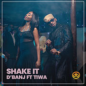Shake It (feat. Tiwa Savage) van D'banj