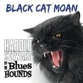 Black Cat Moan de Harold Stewart