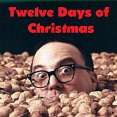 Twelve Days of Christmas by Allan Sherman