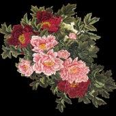 Flowers Garden de Damian Gasparini