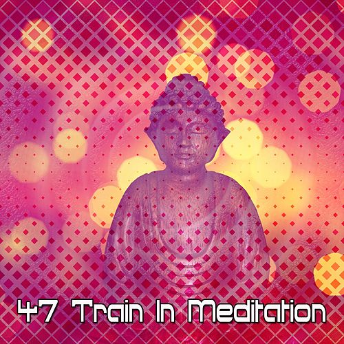 47 Train In Meditation by Music For Meditation