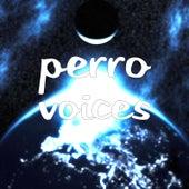 Voices de Perro
