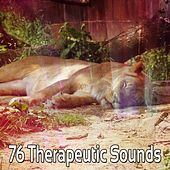 76 Therapeutic Sounds by Ocean Sounds Collection (1)