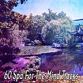 60 Spa For The Mind Tracks de Zen Meditation and Natural White Noise and New Age Deep Massage