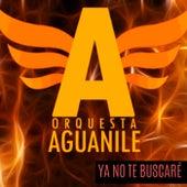 Ya No Te Buscaré de Orquesta Aguanile