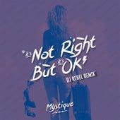 It's Not Right But It's Okay (DJ Rebel Remix) by Mystique