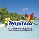 Tropiteca / La Cumbia Cienaguera de Various Artists