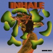 Inhale by Amunbes