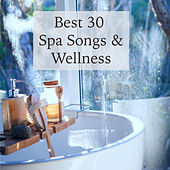 Best 30 Spa Songs & Wellness - Nature Ambient Chill & Oriental Lounge Wellness Music for Spa von Various Artists