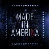 Made in Amerika de Various Artists
